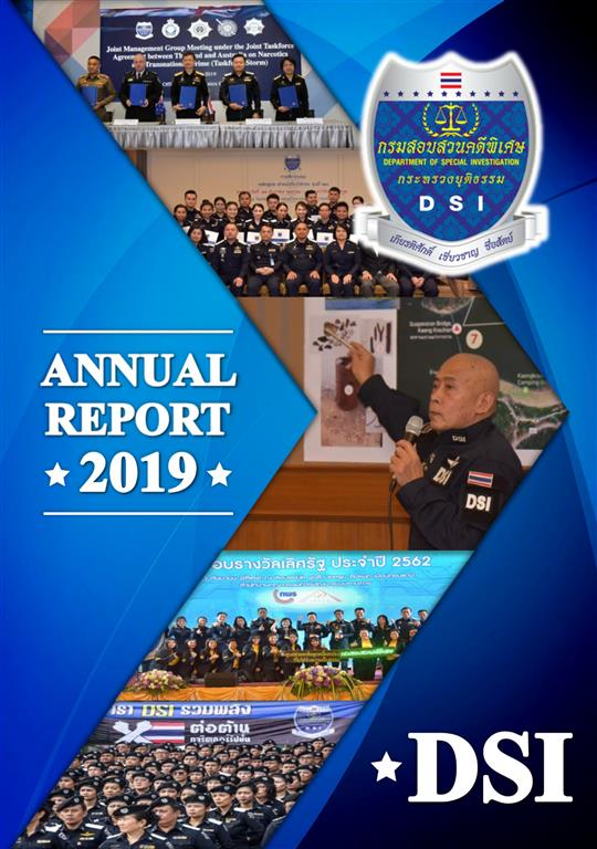 DSI Annual Report 2019